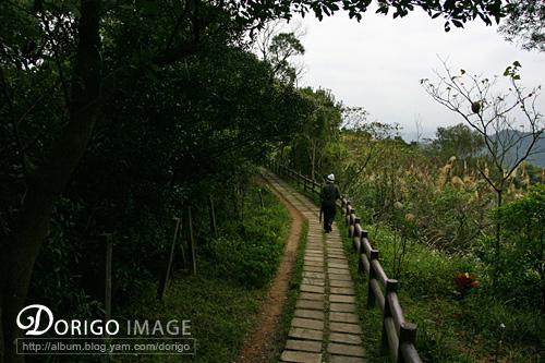 圓通寺登山步道