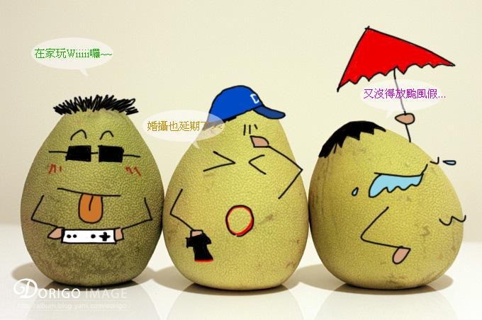 星期天颱風天柚子的心情