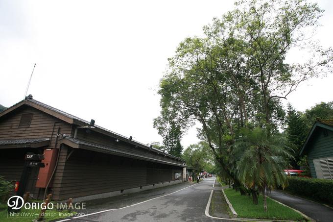 花蓮親子旅遊 林田山