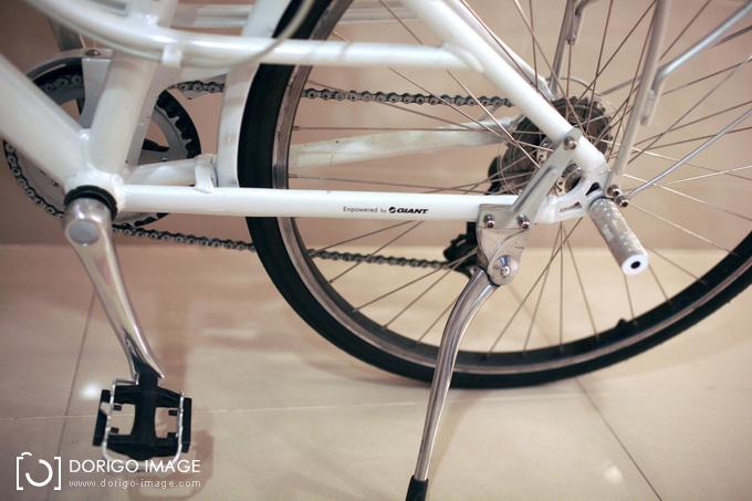 momentum INEED 1500 GIANT 腳踏車
